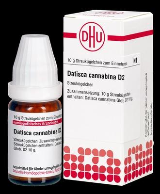 DHU-Arzneimittel GmbH & Co. KG DATISCA cannabina D 2 Globuli 01848399
