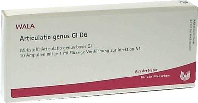 ARTICULATIO genus GL D 6 Ampullen