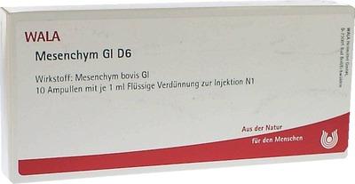 MESENCHYM GL D 6 Ampullen