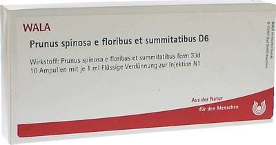 PRUNUS SPINOSA E floribus et summitatibus D 6 Amp.