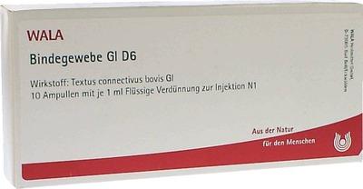 BINDEGEWEBE GL D 6 Ampullen