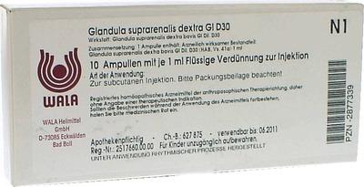 GLANDULA SUPRARENALES dextra GL D 30 Ampullen