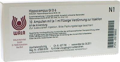 HIPPOCAMPUS GL D 6 Ampullen