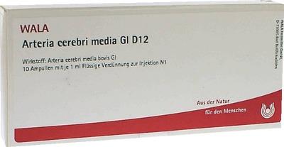 ARTERIA CEREBRI media GL D 12 Ampullen