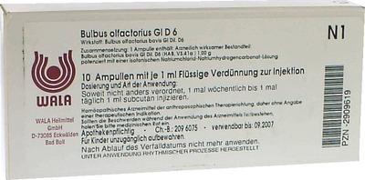 BULBUS OLFACTORIUS GL D 6 Ampullen