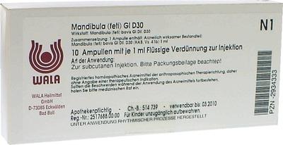 MANDIBULA feti GL D 30 Ampullen