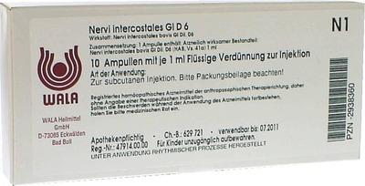 NERVI intercostales GL D 6 Ampullen