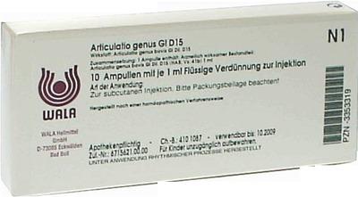 ARTICULATIO genus GL D 15 Ampullen
