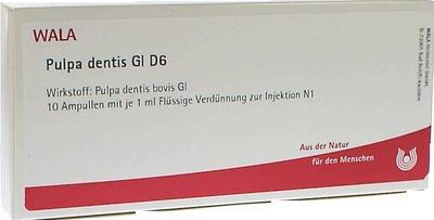 PULPA DENTIS GL D 6 Ampullen
