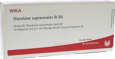 GLANDULAE SUPRARENALES GL D 5 Ampullen