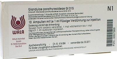GLANDULAE PARATHYREOIDEAE GL D 15 Ampullen
