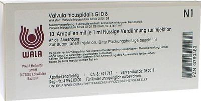 VALVULA TRICUSPIDALIS GL D 8 Ampullen