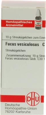 FUCUS VESICULOSUS C 30 Globuli