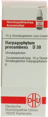 HARPAGOPHYTUM PROCUMBENS D 30 Globuli