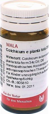 COLCHICUM E planta tota D 6 Globuli
