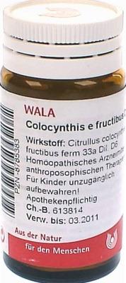 COLOCYNTHIS E fructibus D 6 Globuli