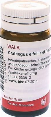 CRATAEGUS E foliis et fructibus D 2 Globuli