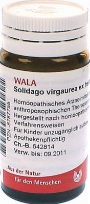 SOLIDAGO VIRGAUREA ex herba D 3 Globuli