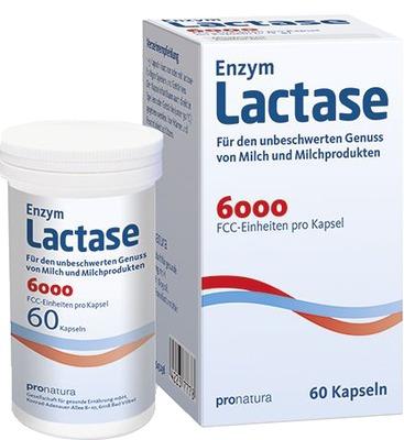 LACTASE 6.000 FCC Kapseln